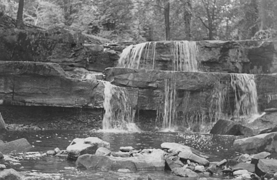 Davis Creek 1953