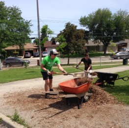 Veevers Park Clean Up 1